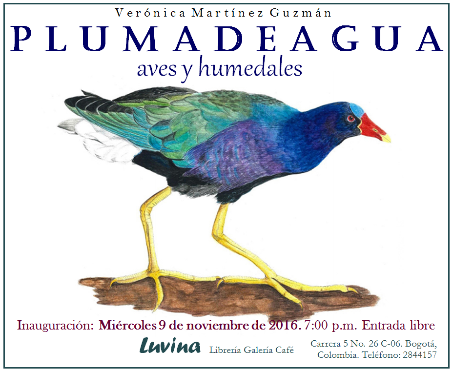 plumadeagua2