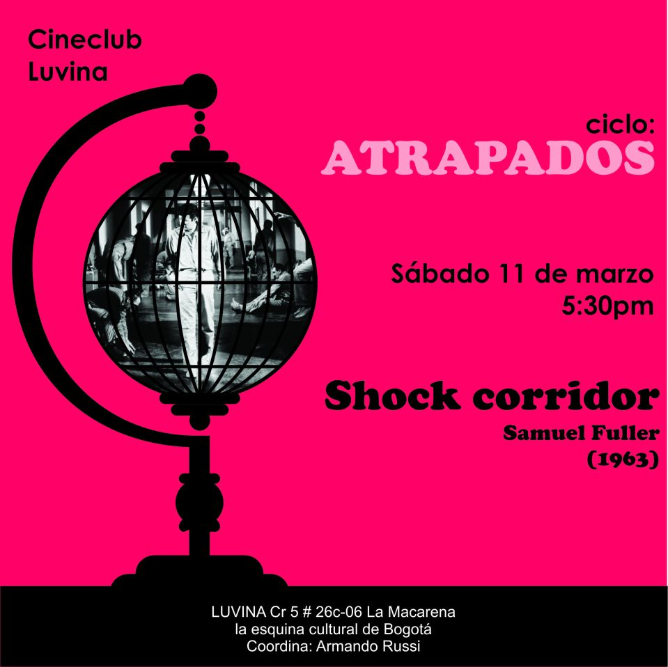 2. Shock (1)